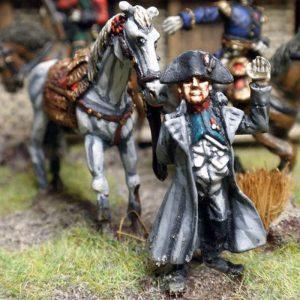 Napoleon dismounted with horse.