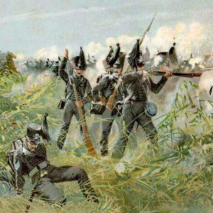 Brunswick Napoleonic's