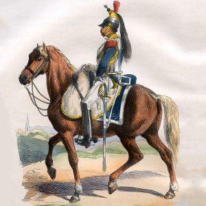 Napoleonic Horses